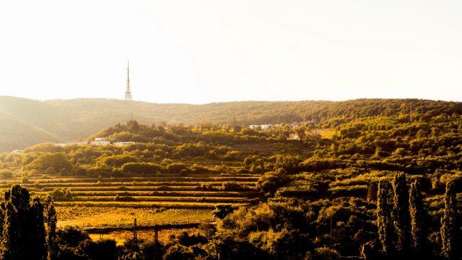 Modré hory a Toskánsko v Bratislave